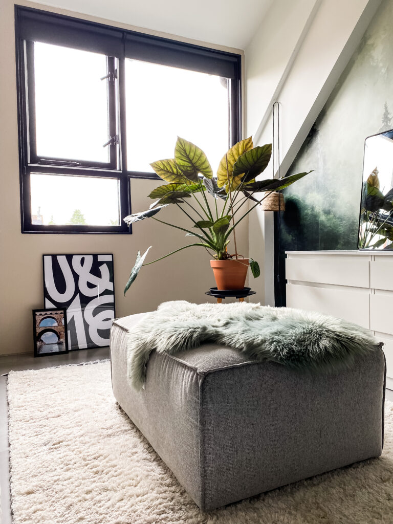 overzichtsfoto kledingkamer met zwarte raamsluitingen van AXA op het raam